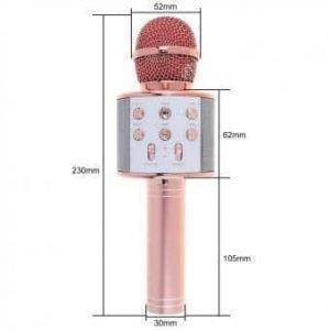 WS858 Bluetooth Wireless Handheld Microphone Hifi Speaker with Adjustment Panel-1